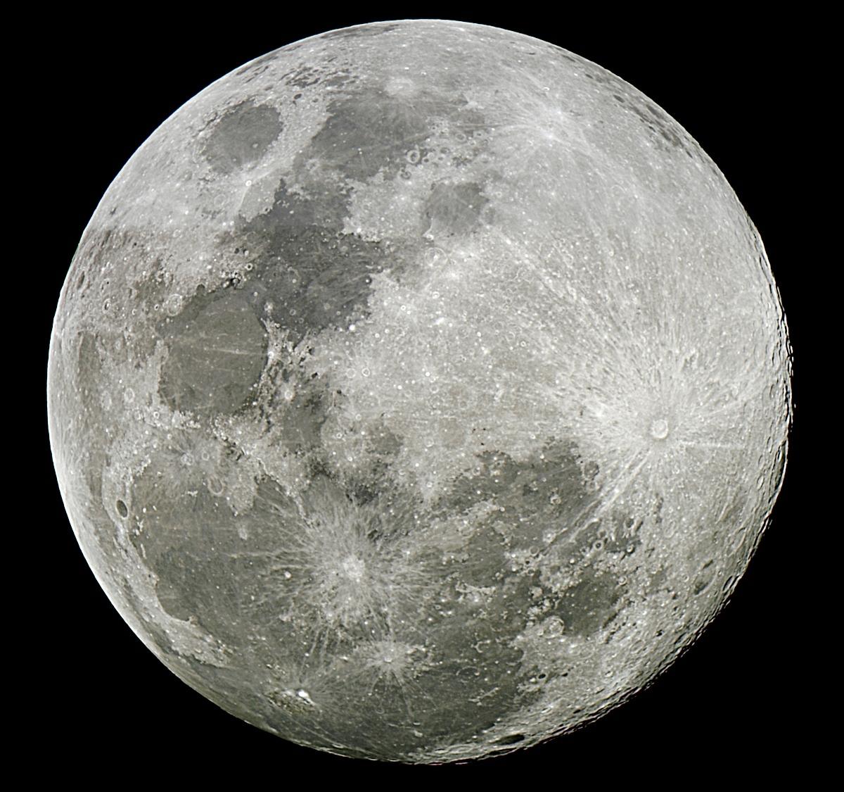 Full Moon: COACHchromeDOME