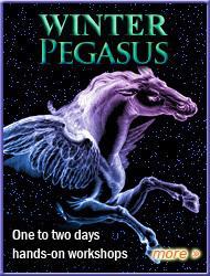 pegasus-2011-hp-3col-winter