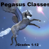 banner-pegasus-2016-rectangle